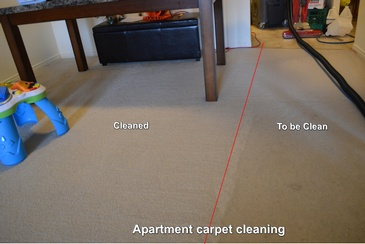 Apartment Carpet Cleaning Services Tillsonburg, ON by SkyClean Inc.